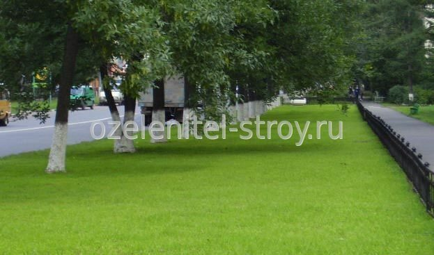 Городская больница саранск