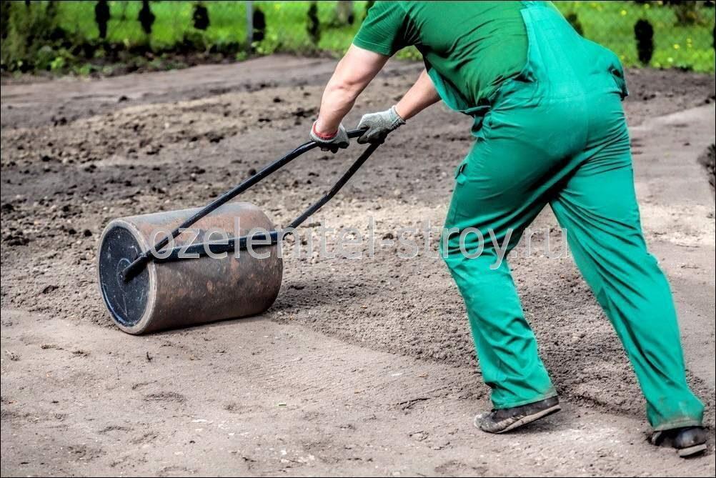 Газон в семенах как сажать 93