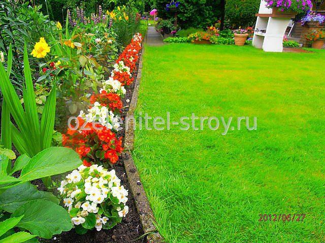 Бордюры цветы