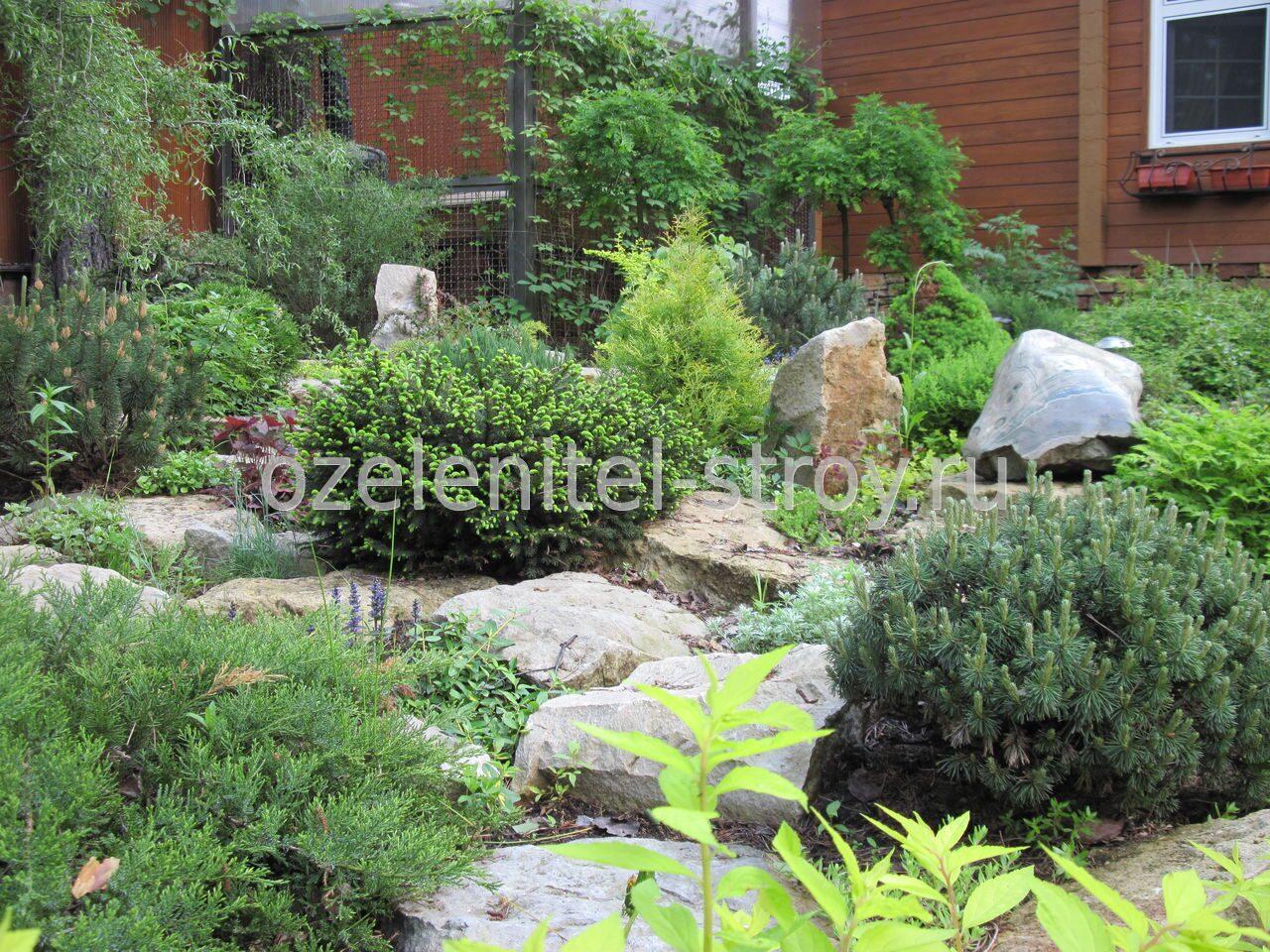 Ландшафтный дизайн дачного участка альпийская горка фото